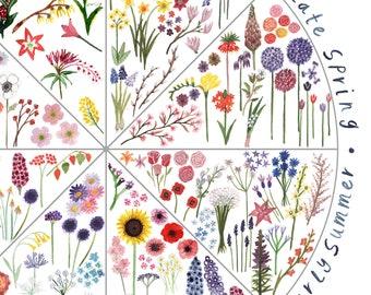 Seasonal Flowers Botanical Wall Art Spotters Guide
