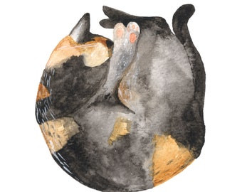 SALE Curled Up Cat A5 Print