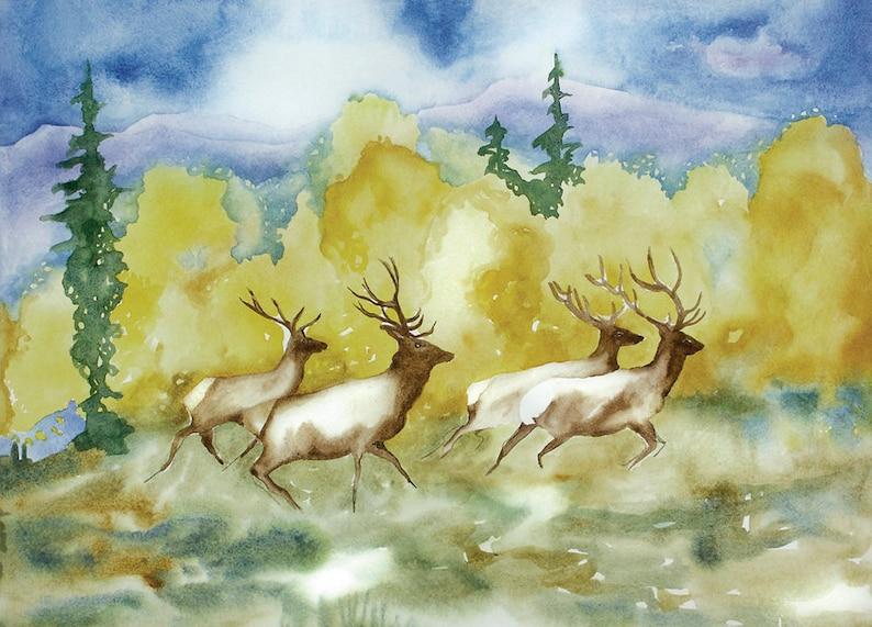 Wall art prints elk watercolor  Colorado Mountain Art  Elk image 0