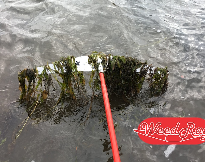 Weed Ray - WeedRay None to 4 pole options, you choose - Lake weed lakeweed removal tool - - weed rake for waterfront
