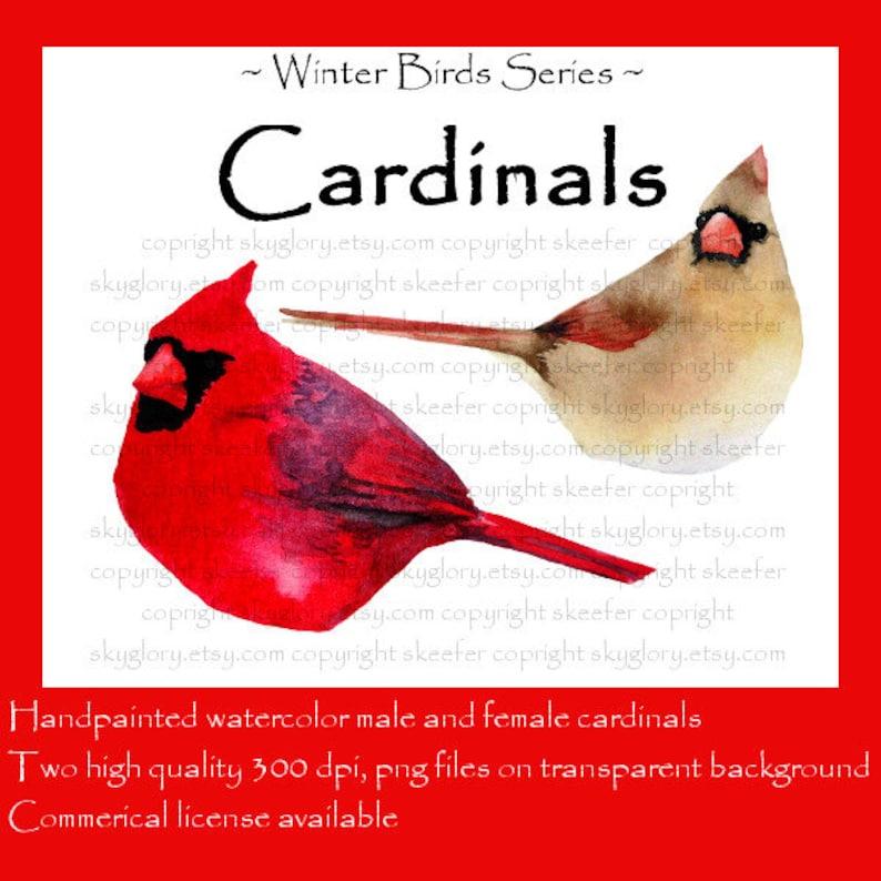 Cardinal Clip Art Christmas Clip Art Holiday Clip Art Bird Etsy