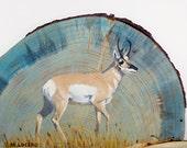 Pronghorn Oil Painting on Beetle Kill Pine
