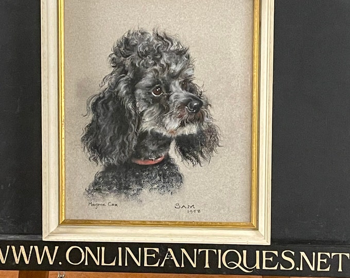 Fabulous Original Pastel Study Of A Poodle By Marjorie Cox Titled ' Sam' Dated 1958