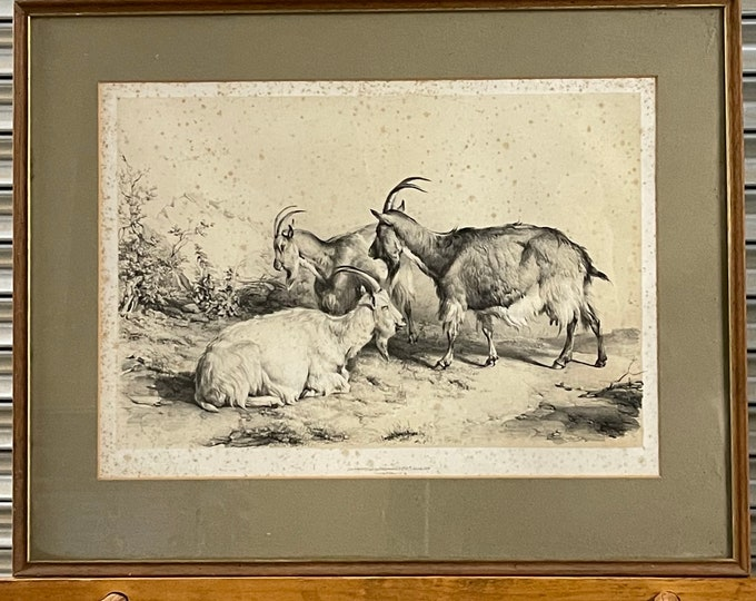 Thomas Sidney Cooper (1803-1902) Lithograph, Group Of Goats, Dated 1839