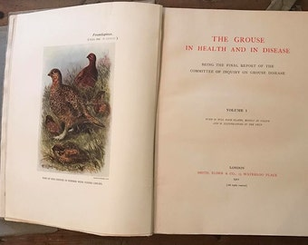 Rare Book - The Grouse In Health And In Disease 1911 First Edition (Two Volumes)