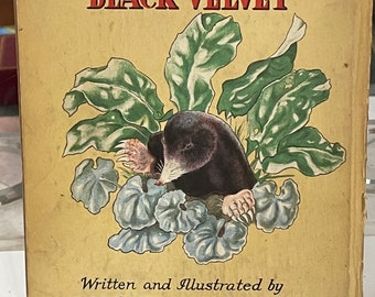 Rare Childrens Book By The Artist And Illustrator Dorothy Burroughes 'The Gentleman in Black'