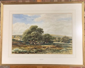 Wonderful Original 19th Century Watercolour Of Bradgate Park By James Orrock RI
