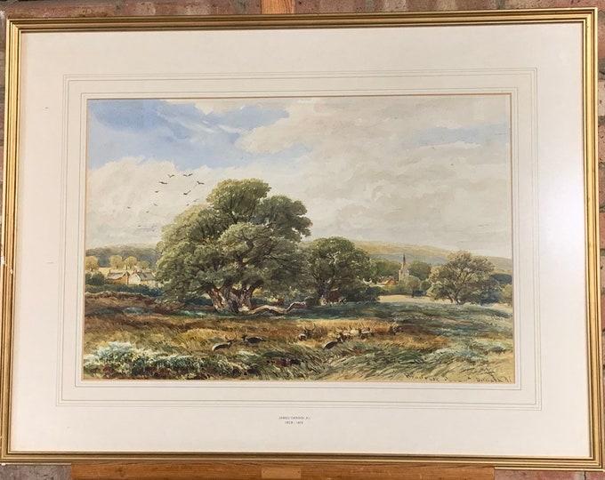 Wonderful Original 19th Century Watercolour Of Bradgate Park By James Orrock RI