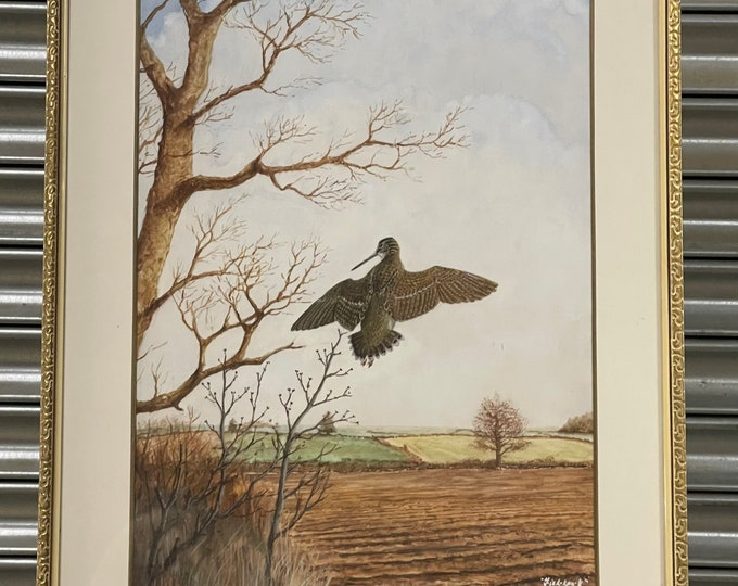 Original Watercolour Of A Woodcock By David Wolfe Murray Aka Fish-Hawk(1929-2010)
