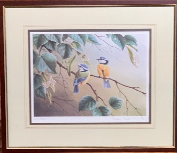 Wonderful Limited Edition Signed Print of Blue Tits by Ralph Waterhouse Dated 1977