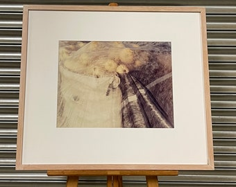 Framed And Glazed Modernist Abstract Unsigned Lithograph Artwork of Fruit Under a Veil
