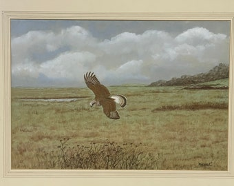 Original Watercolour Of A Bird of Prey By David Wolfe Murray Aka Fish-Hawk(1929-2010)