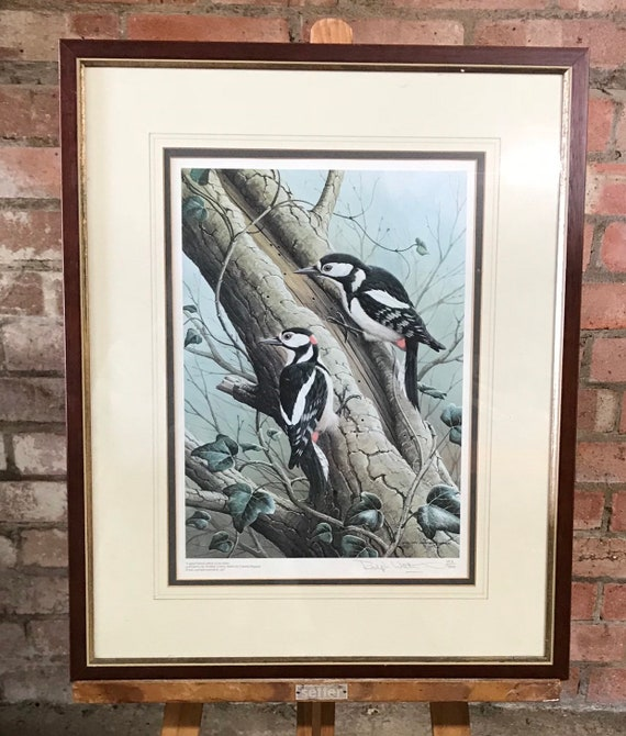 Beautiful Limited Edition Print of Woodpeckers by Ralph Waterhouse
