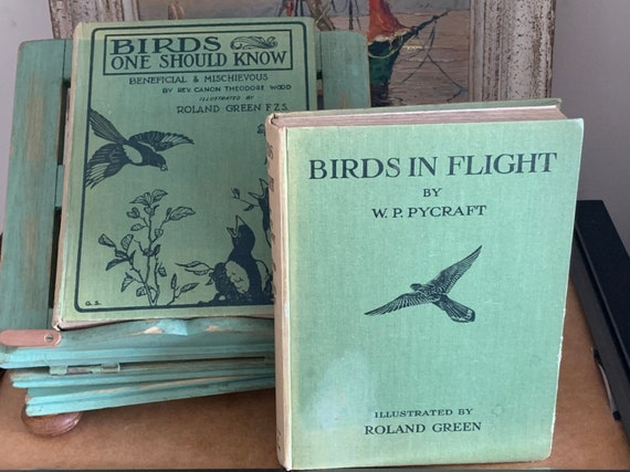 Two Vintage 1920's Books With Coloured Illustration Plates Of Birds