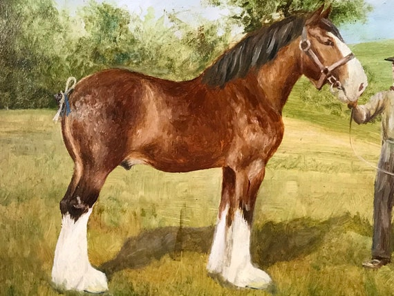 Beautiful Early 19th Century Oil Painting Of A Shire Horse By Jack Hartley