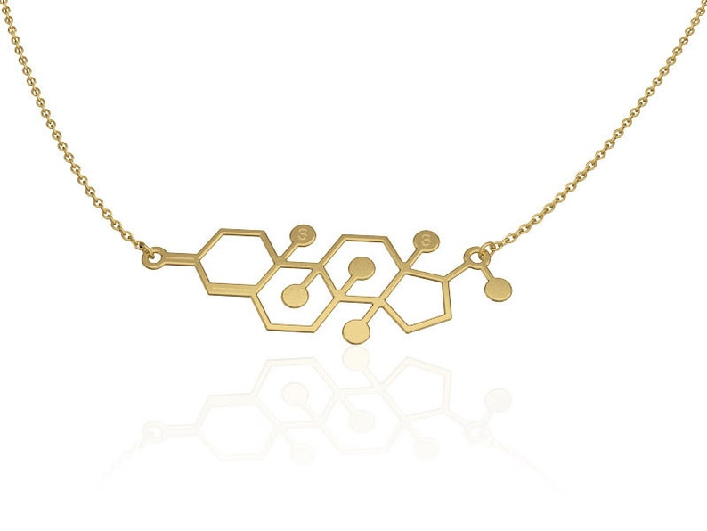 unique necklace womens modern jewelry molecule necklace Testosterone 14k gold filled  necklace science jewelry chemistry necklace