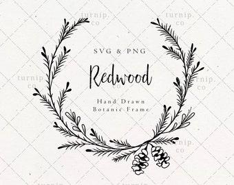 Redwood Bough Wreath SVG & PNG Clipart Sublimation Graphic Design / Botanical Border Frame Floral Vector Wood Art Conifer Pine Printable