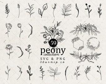 The Peony Collection SVG & PNG Clipart Sublimation Graphic Design / Botanical Leaf Floral Frame Border Illustration Print Wall Sign Wood Art