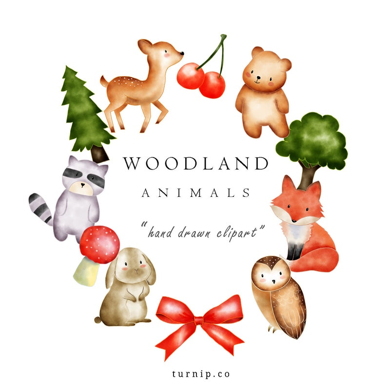 Watercolor woodland animal clip art images
