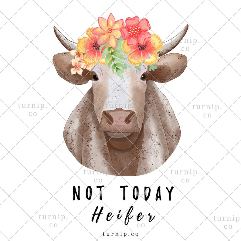 Not Today Heifer PNG Clipart Sublimation Graphic Cartoon PNG