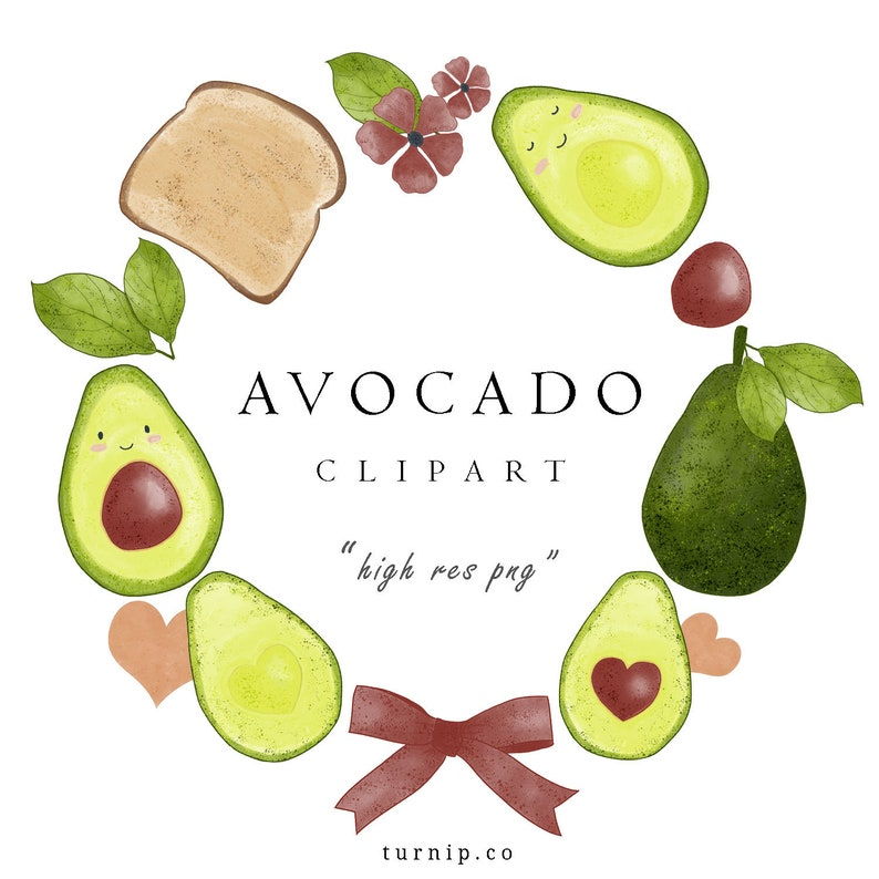 Watercolor Avocado Clipart Cute Pictures Set