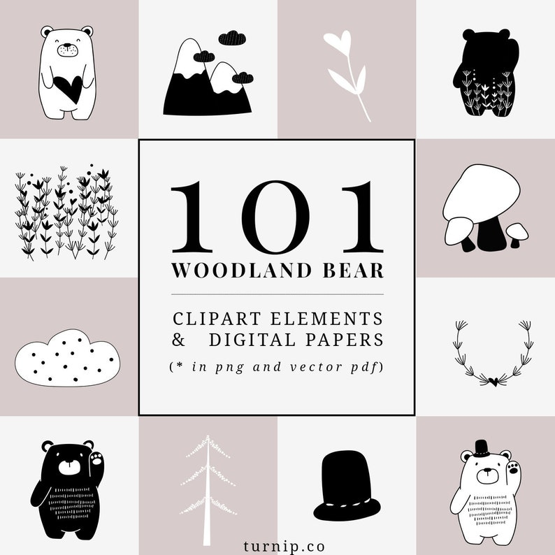 101 Bear Cartoon Images Clipart Set Cartoon PNG