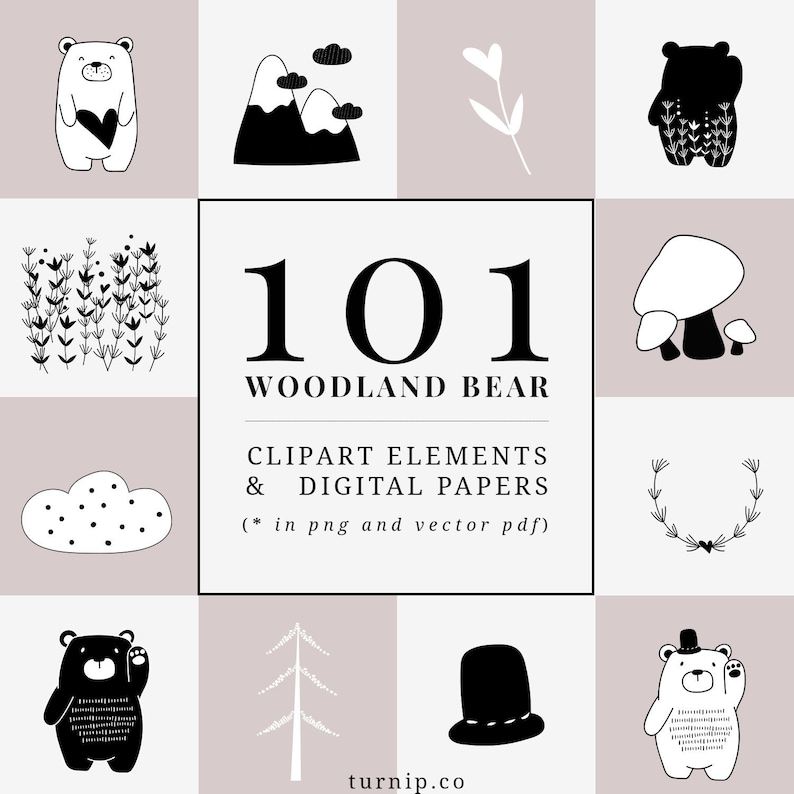 101 Bear Cartoon Images Clipart Set
