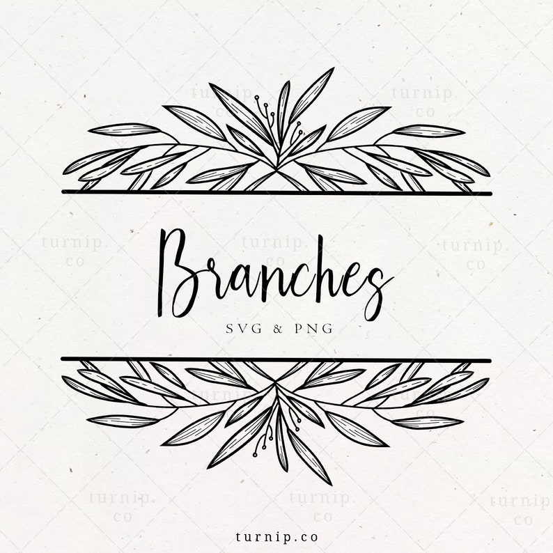 Flourish Decorative Text Divider SVG Family Name Frame svg image 0