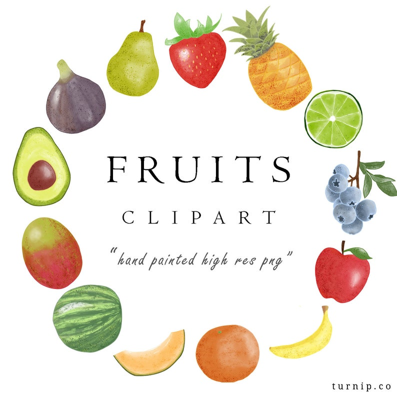 Watercolor Fruit Clipart PNG Download Set