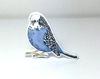 Blue Budgie Love Bird Brooch