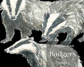 Hand Painted Water Colour Badger Clip Art