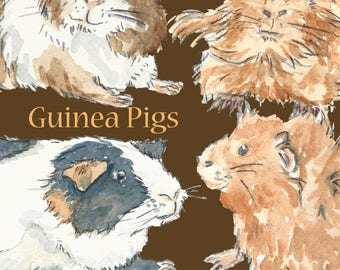 Hand Painted Water Colour Guinea Pigs