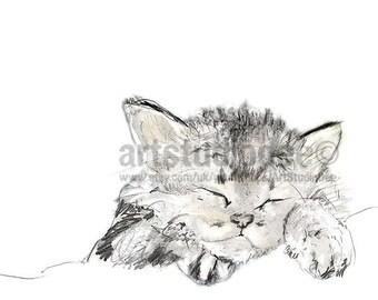 Kitten Art Print-A3 or 11x14 inch. Cute Kitten from original sketch, Tabby Cat Print, Kitten Sleeping Sketch, Cat Drawing, Cute Cat Gift