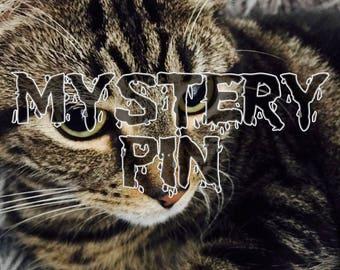 Mystery Enamel Pin