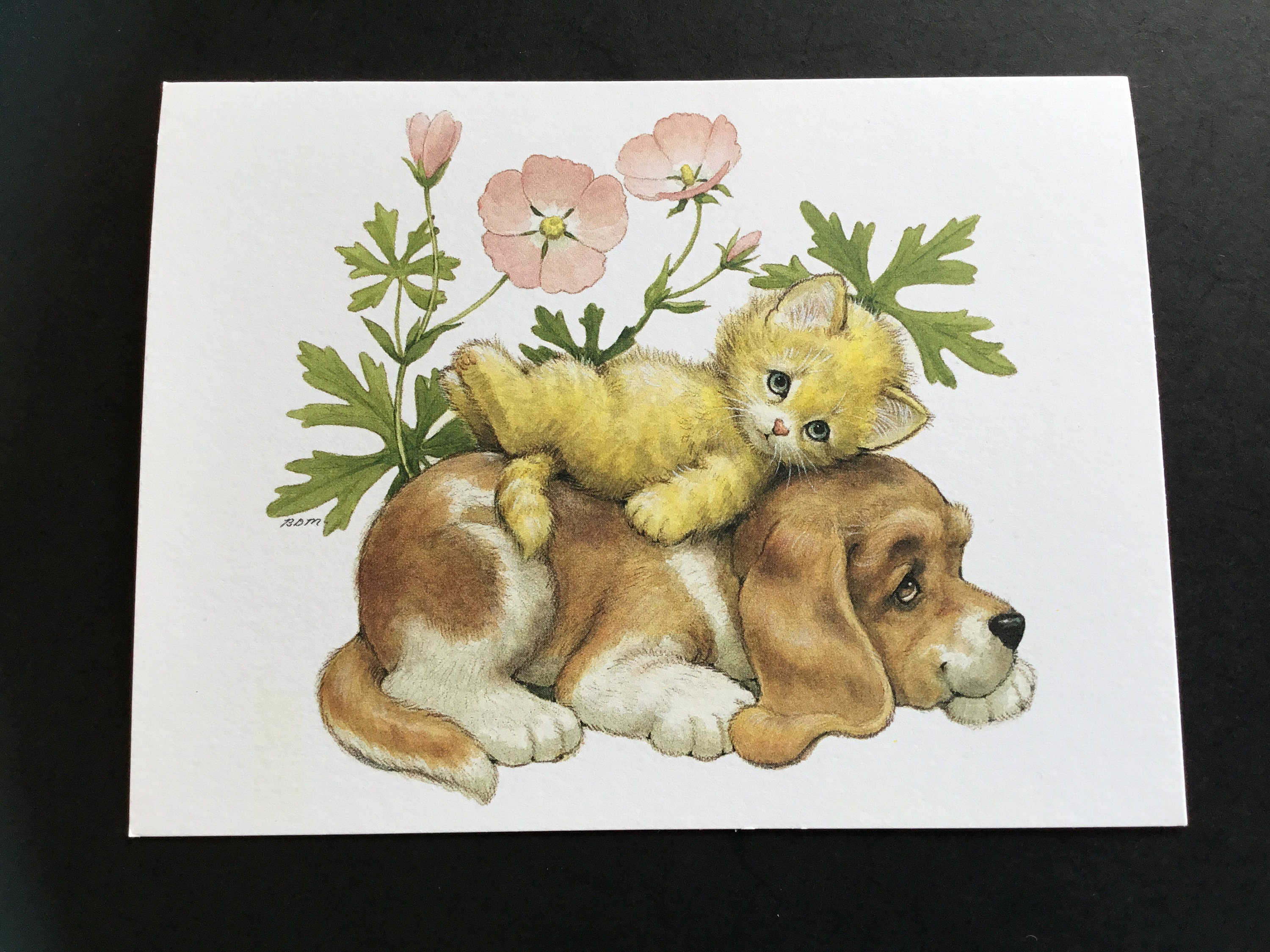 Vintage Unused Puppy Toes Birthday Greeting Card By Etsy