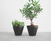 2x cactus pots, ceramic planters, small planter, plant pot, modern planter, herb planter, house plant, small plant pot, mint, gift idea