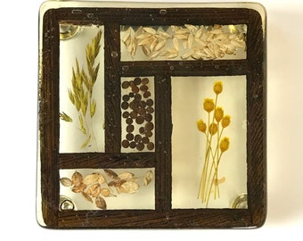 Vintage Curio Framed Dried Herbs, Seeds & Grains Enclase in Lucite Wall Hanging Trivet - French Country Nature Art / Coastal Bohemian Decor