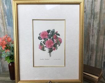 """Camellia Wall Hanging - Vintage Floral Art - 22"""" Framed Pink Flower Print - Camellea Donation - Victorian Botanical Artwork - Gift for Mom"""