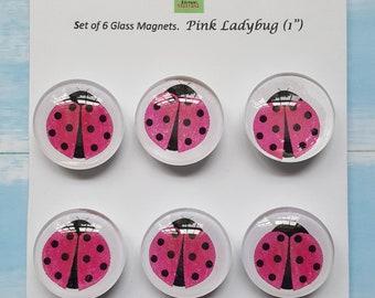 Pink Ladybug magnets
