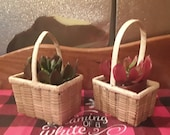 Easter Two small mini vintage wicker basket for succulent planters trinkets herbs dolls Boho farmhouse country market handled miniature