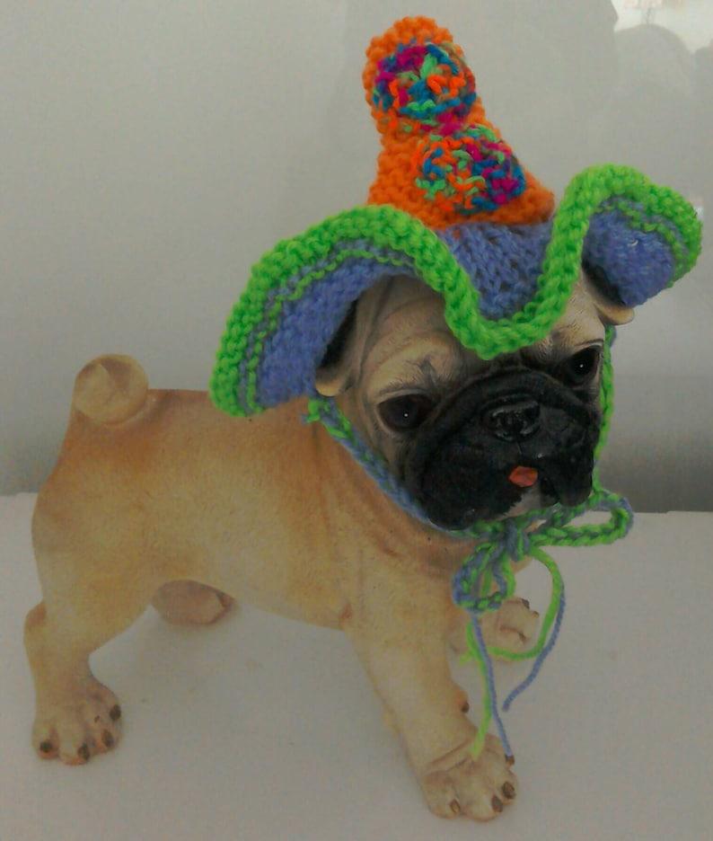 Sombrero de cumpleaños para perros perro primavera sombrero  06e9801928f