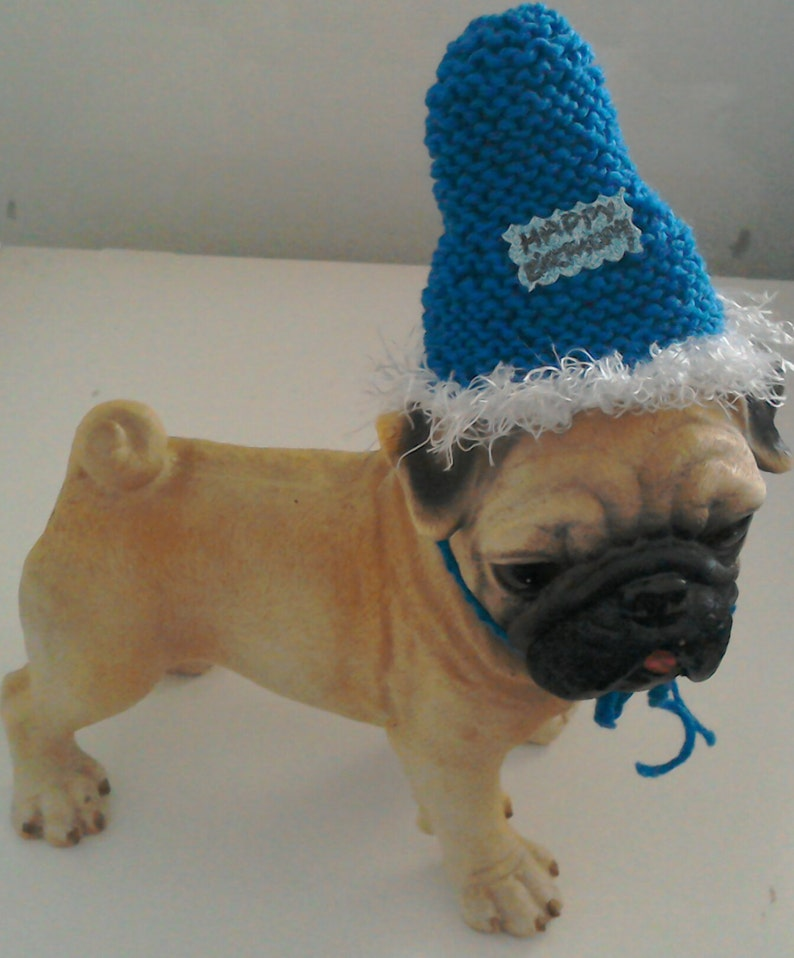 Knit Dog Or Cat Birthday Party Hats Pet Guinea
