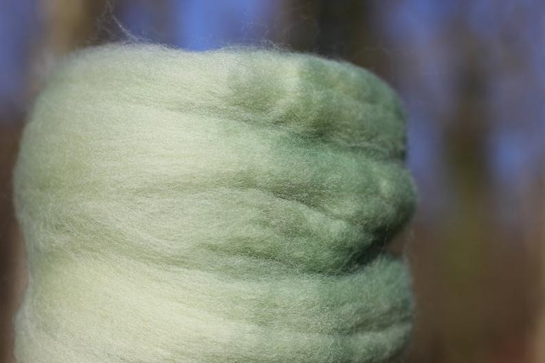 25g packs Organic Falklands-merino Chlorophyllum natural plant dyed green handspinning felting super soft fibre