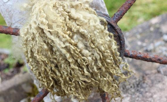 10g Hand Dyed Wensleydale Wool Locks,Yellow Spinning,Dolls Hair Needle Felting