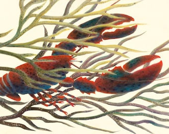 """GICLEE PRINT OF """"Baby Lobster Drifting"""""""
