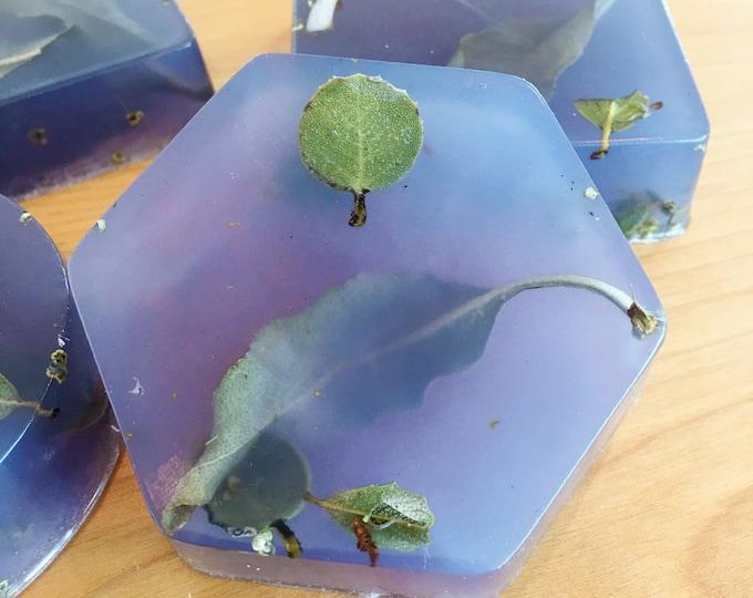 Smudge Soap | Sage and Grapefruit Olive Oil Soap | Handmade Soap, California White Sage Soap | Translucent Soap | Grapefruit and Sage Scent