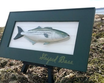 Hand Carved / Hand Painted Striped Bass Mounted in Frame