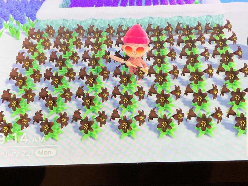 New Horizons Black Lilies Animal Crossing