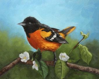 Birds of maryland | Etsy
