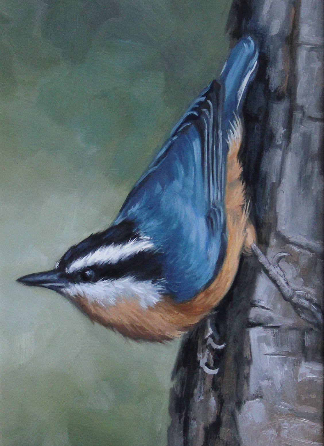 Red Breasted Nuthatch Nuthatch Bird Painting Open Etsy